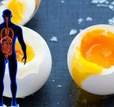WHAT HAPPENS WHEN YOU EAT 3 WHOLE EGGS EVERY DAY